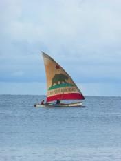 bateaux (14)