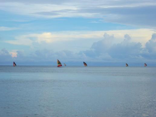 bateaux (15)