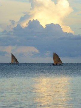bateaux (5)